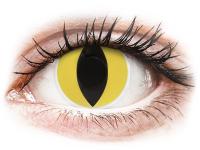 alensa.sk - Kontaktné šošovky - ColourVUE Crazy Lens - Cat Eye - nedioptrické
