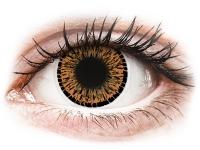 alensa.sk - Kontaktné šošovky - ColourVUE Elegance Brown - nedioptrické